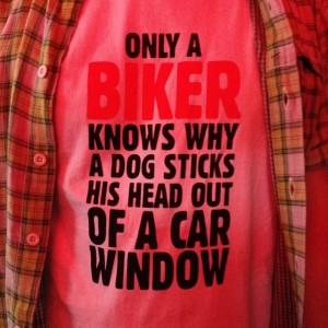 camiseta do haase, foto docemente furtada da renata winkler.
