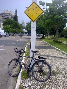 no centro de itajaí, em santa catarina, a bicicleta respeitando as capivaras.