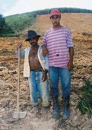 duas gerações de lavradores no interior do Nordeste. a altura não é apenas questão de genética, embora muitos brasileiros sejam naturalmente mais baixos.